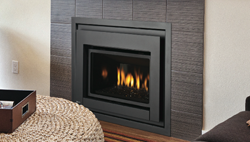 E18 fireplace insert